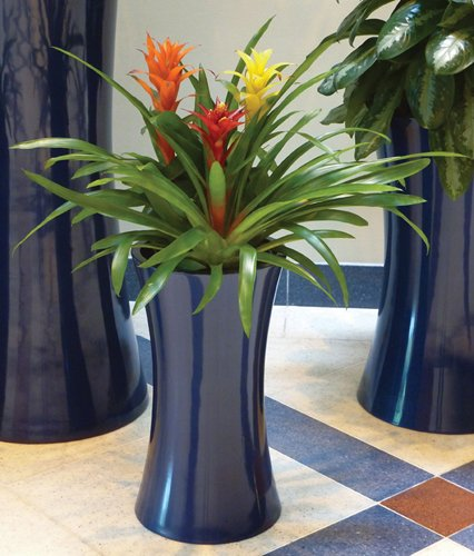 Symmetry Cylinder And Tall Cluster In Dark Sapphire With Bromeliads
