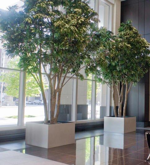 Interior Plantscaping Professional DesignGuaranteed Service